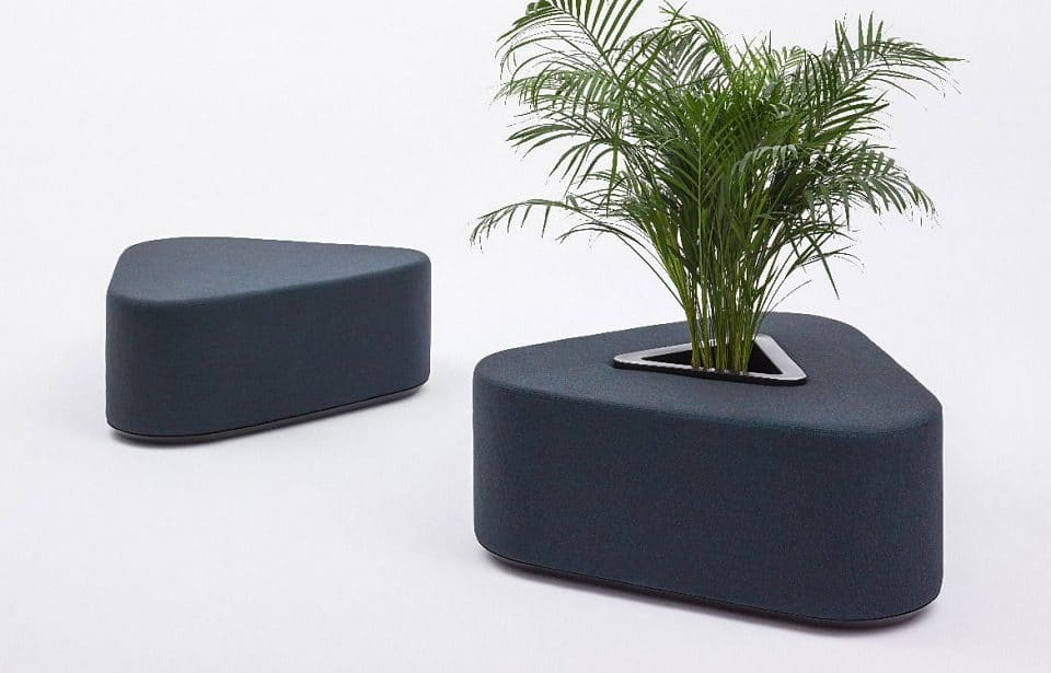 School seating with plant
