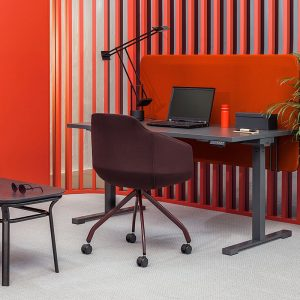 Sit Stand Electric Desk