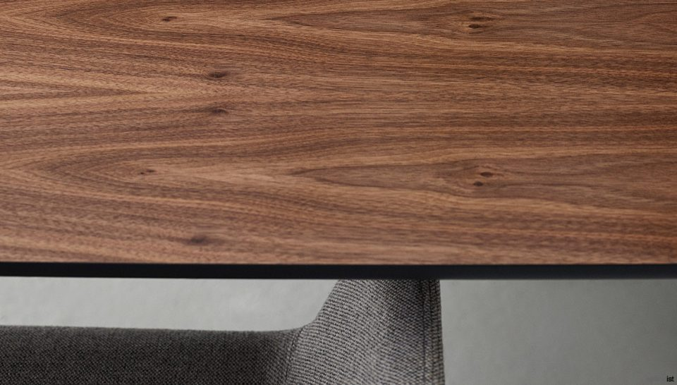 Walnut Veneer Closeup