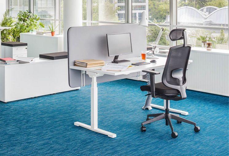 White Desk Blue Carpet