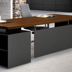 CEO managerial desk with wall shelf