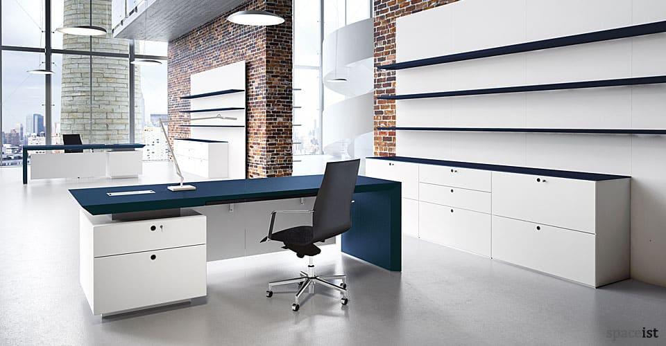 CEO blue directors desk
