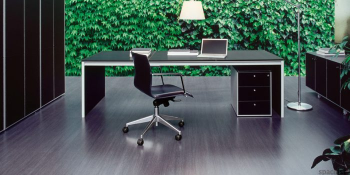 corium leather exeutive desks
