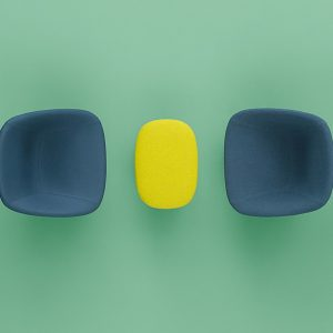 Log wide reception chair in green and blue