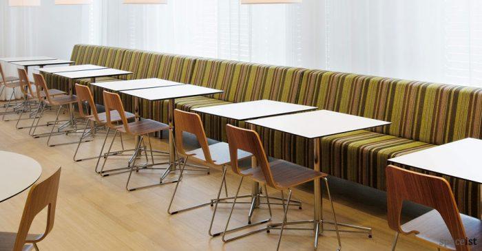 studio walnut modern cafe chairs